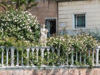 I giardini di maggio (visite guidate ai giardini storici)